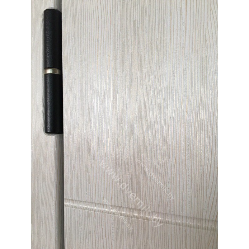 Входная дверь М-42